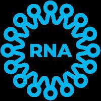 SPVN_ICON_RNA